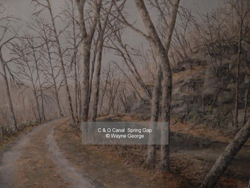 C & O Canal  Spring Gap