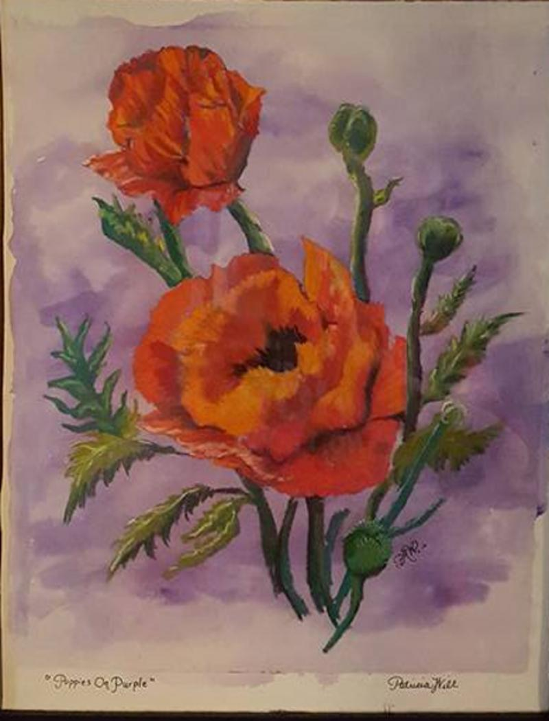 Poppies On Purple