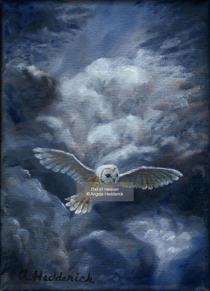 Owl of Heaven