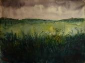 Dense Grassland