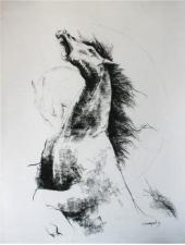 Majestic Horses II