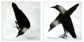 Crows I & II