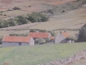Farndale - North York Moors