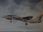 F14 Tomcat - Setting The Trap