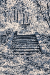 Derelict Steps Druid Hill Park