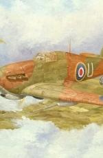 Hawker Hurricane MkII D