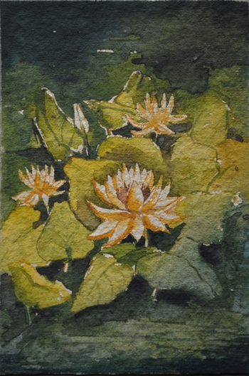 Watercolor on Poster Paper painting titled Water Lilies