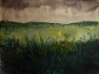 Tempera on Poster Paper painting titled Dense Grassland