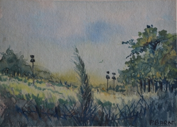 Watercolor on Poster Paper painting titled Rural Landscape