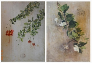 Watercolour on Silk painting titled Flowers on Silk I & II