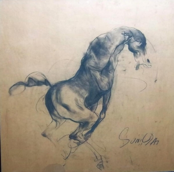Charcoal on Paper painting titled Stallion II