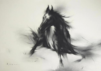 Charcoal on paper painting titled The stallion