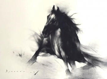 Charcoal and Acrylic on Paper painting titled The Stallion