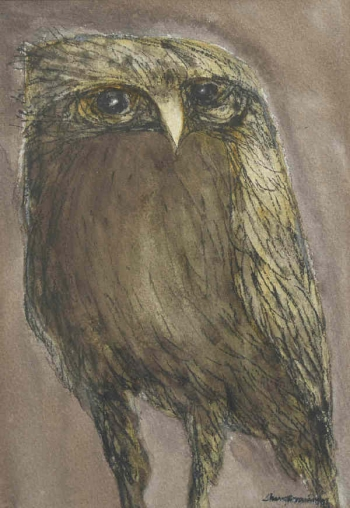Charcoal & Conte on Paper painting titled Owl